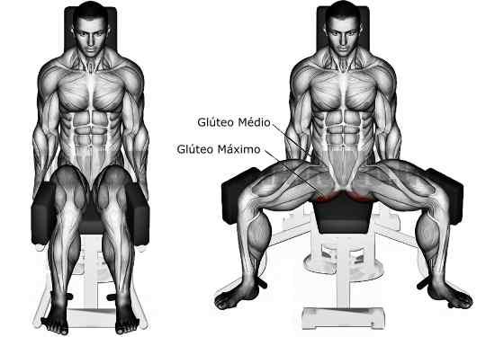 Treino de Pernas: 10 Exercícios para engrossar as pernas