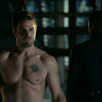 "Stephen Amell as Oliver Queen/Arrow and David Ramsey as John Diggle shirtless in Arrow 1×10 ""Burned"""