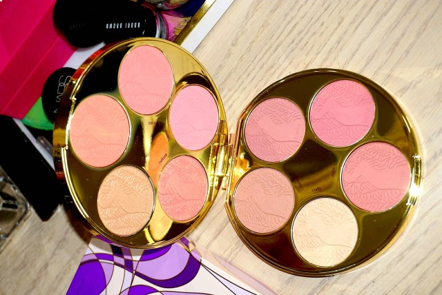 Tarte Color Wheel Amazonian Clay Blush Palette Swatches on Dark Skin
