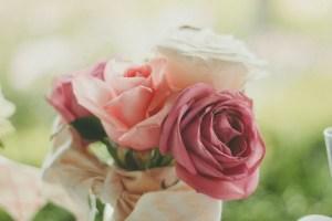 Seductive-Roses