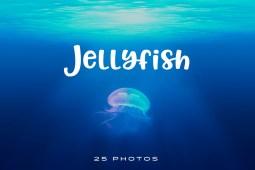 Jellyfish Photo pack