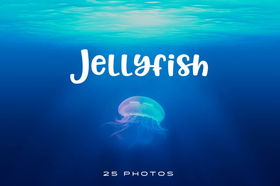 Enjoy jellyfish without the sting with this amazing collection of jellyfish photos.
