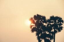 Beautiful-Sunset