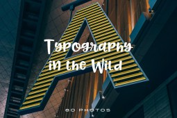 Typography-in-The-Wild