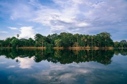 Amazing-Photography-of-a-Cambodian-Forest-Reflecting-in-Clear-Water
