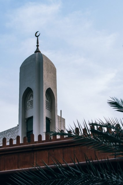 Islamic-Mosque-Minaret-Photographed-Behind-Palm-Tree-Leaves