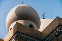 Two-Pigeons-Kissing-While-Sitting-on-top-of-a-Mosque