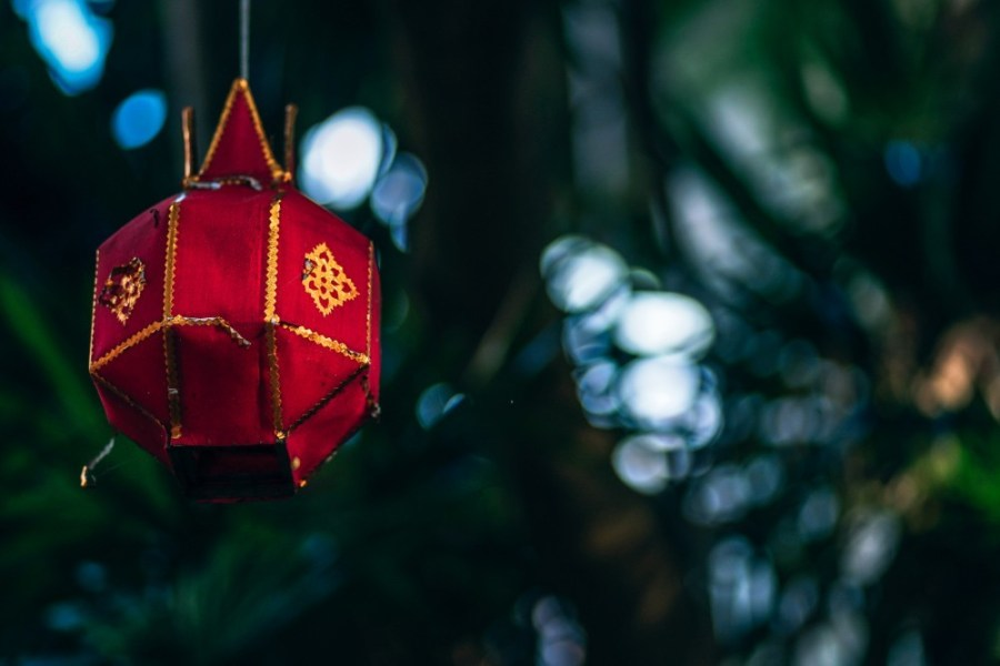 Red-Decorative-Lamp-Hanging-from-a-Tree
