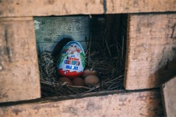 Kinder-Surprise-Egg-Hidden-in-an-Egg-Nest