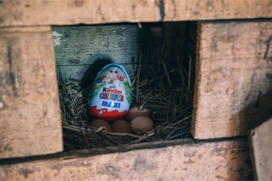 Kinder-Surprise-Egg-Hidden-in-an-Egg-Nest