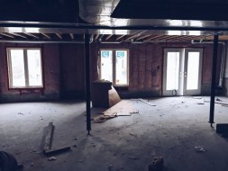 Why Spiders Like the Basement