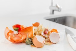 Food Waste in America Improving resource use through digital solutions