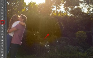 remove sun glare from photo brush tool