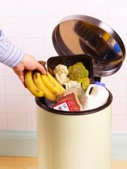 ef1d47acc61bc538_food_waste