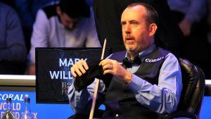 Mark Williams Biography