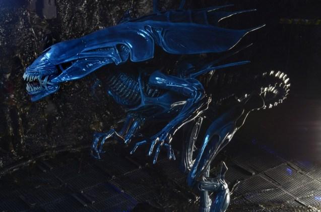 alienqueen09