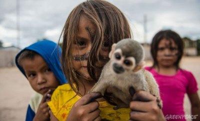 Excavadoras en el corazón de la Amazonia