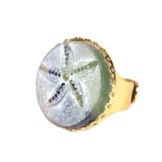 bijoux cristal étoile de mer pâte de verre créations Stéphane Dunoyer
