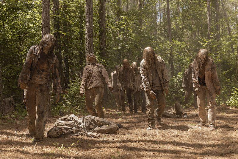 AMC - The Walking Dead