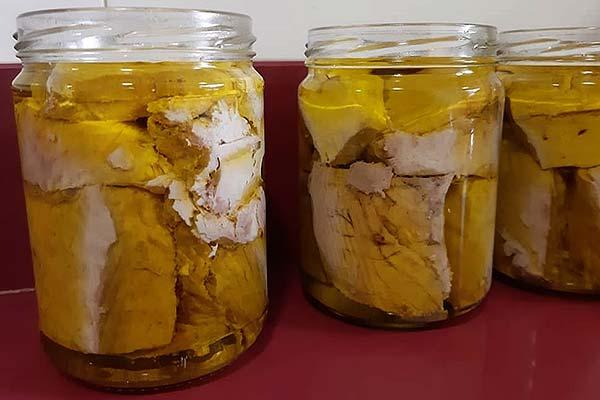 fanfood bonito conserva en aceite