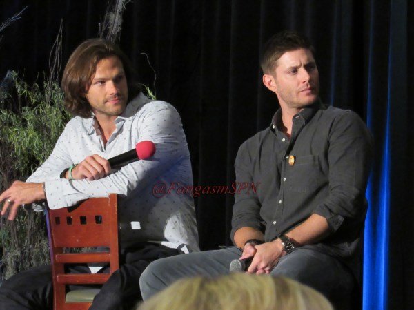 Comic Con and DCCon 2015 703
