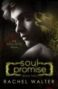 Spotlight and Review!!  Soul Promise by Rachel Walter