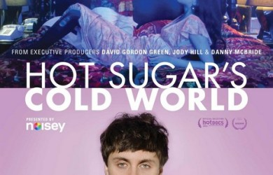 Hot Sugar's Cold World Poster