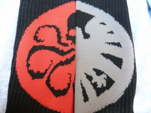 Shield and Hydra Socks from March 2016 Loot Crate Level Up
