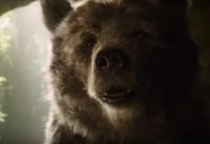 Enter Baloo