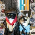 Archer and Armstrong Valiant Cat Cosplay Cover
