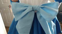 Sailor Mercury Pieces