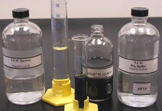 Reagents for reaction mix