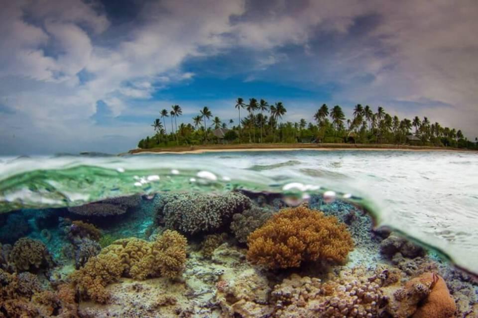 15 photos entre terre et mer-Blographisme-15