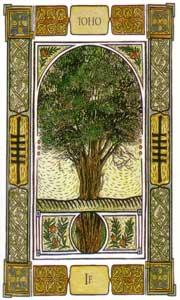 Oracle celte des arbres if