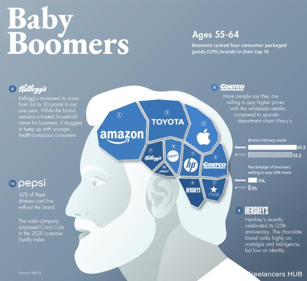 Branding Infographic