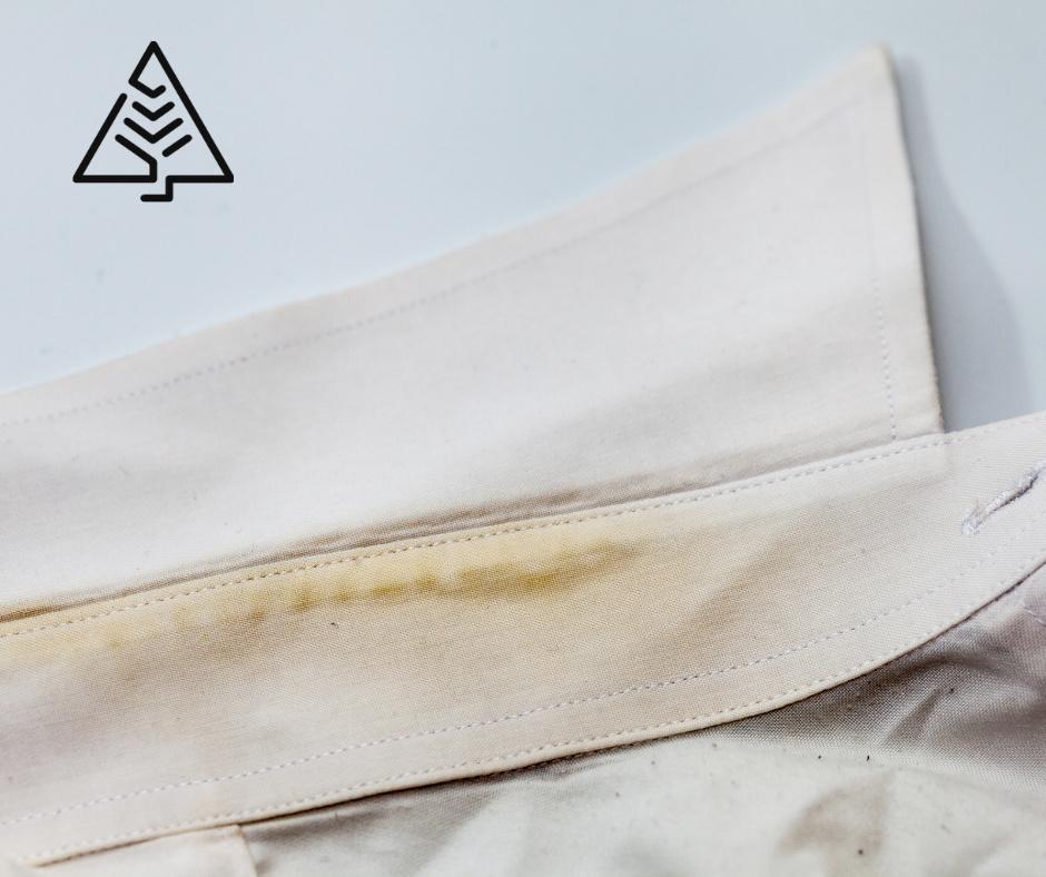 tache nettoyage produit environnement ecologie pinextract bioleven remieldie