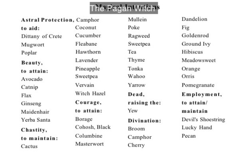 kitchenwitch kitchenwitchcraft witchcraft seawitch cosmicwitch technowitch spells herbs magic wicca wiccan paganwicca wiccaforbeginners reference ref writingref writingreference