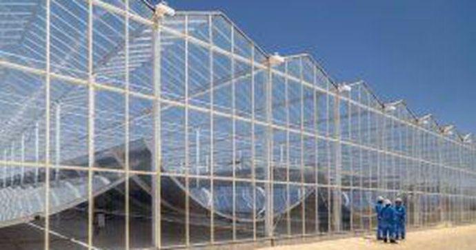 solarenergy solarpower solarpanels solarpanelswork