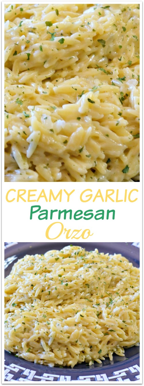 orzo garlic happilyunprocessed