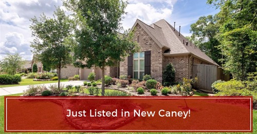JUST LISTED in New Caney, Tx!