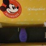 The Walt Disney World®Resort Magic Band is MAGIC!
