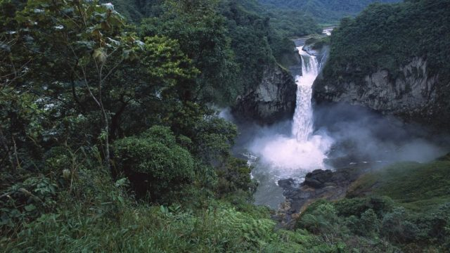 Amazon Rainforest - most beautiful forests