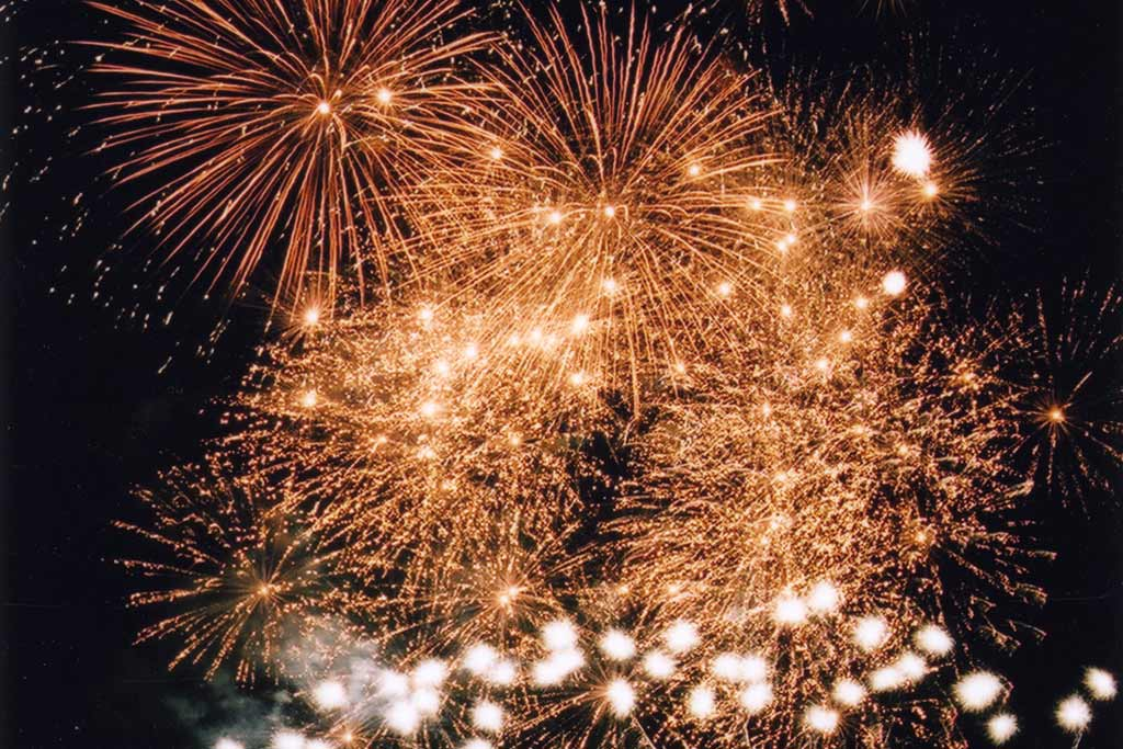 Professional Fireworks Displays   Private Party Fireworks