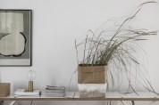 Sideboard växt