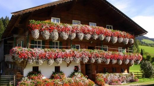 Bloemenzee aan Oostenrijkse balcons