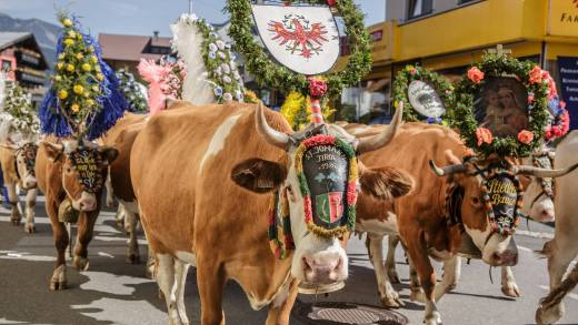 Knödelfestival, Almabtrieb en 1e après skibar open voor 1 dag