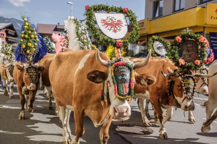 Almabtrieb St Johann