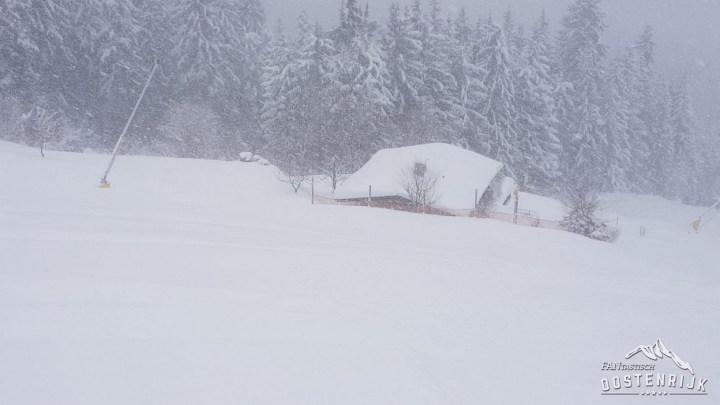 Kandleralm Brixen im Thale