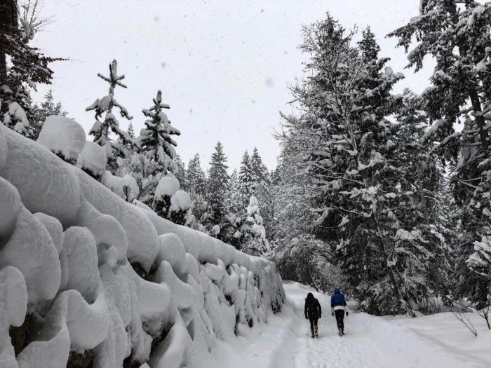 Winterwandeling Kitzbühel
