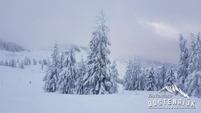 Winter Topfoto